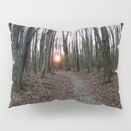 Turn Right at the Setting Winter Sun Pillow Sham