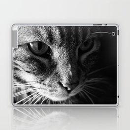 Indy Laptop & iPad Skin