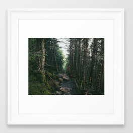 On the Trail, White Mts., NH Framed Art Print