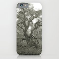 vintage tree Slim Case iPhone 6s