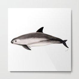 Vaquita Metal Print