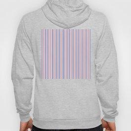 Rose Quartz and Serenity stripes Hoody