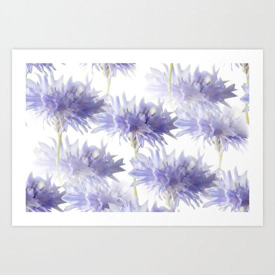Pale Blue Cornflowers Art Print