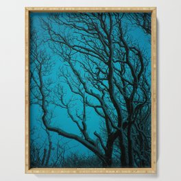 SNOWY BRANCHES IN WINTER BLUE Serving Tray