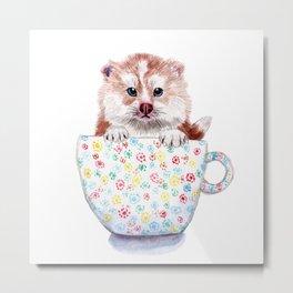 Baby Pomsky in Teacup Metal Print