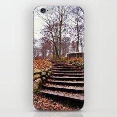 Silkeborg iPhone & iPod Skin