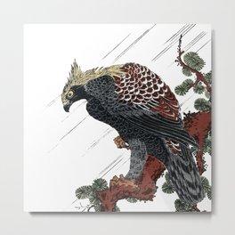 Japanese Woodcut:  Eagle on pine branch in rain Metal Print