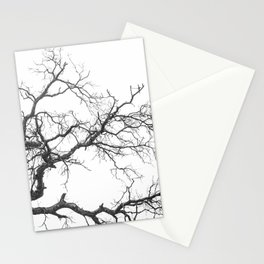 EXTENDED Stationery Cards