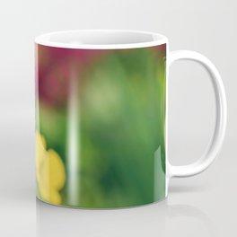 Spring Poppy Flower - Meconopsis Cambrica Coffee Mug