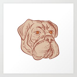 Bullmastiff Head Etching Color Art Print