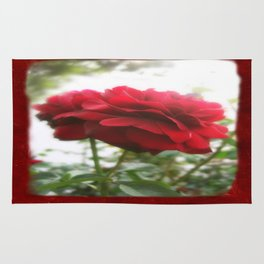 Red Rose with Light 1 Blank P5F0 Rug