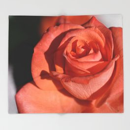 red rose 1 Throw Blanket