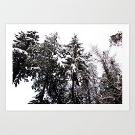 WINTER IS FALLING Art Print