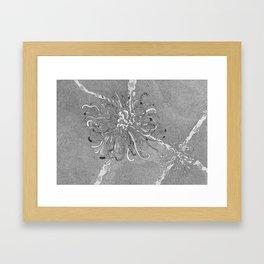 Large Black  Ink Chrysanthemum Framed Art Print