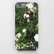 chintz Slim Case iPhone 6s