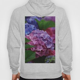 Colorful Rose Blue Lilac Hydrangea Hortensia Flower Hoody