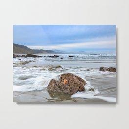 A Starfish Hangs on for Dear Life Metal Print