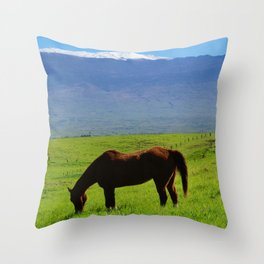 Kamuela Countryside with Mauna Kea Throw Pillow