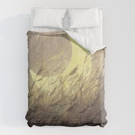 Moon Grass  Wheat and Night Field Comforters