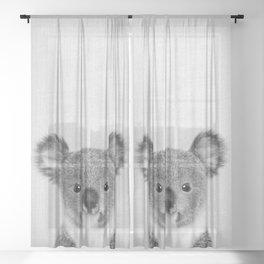 Baby Koala - Black & White Sheer Curtain