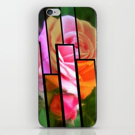 Pink Roses in Anzures 2 Tinted 1 iPhone Skin