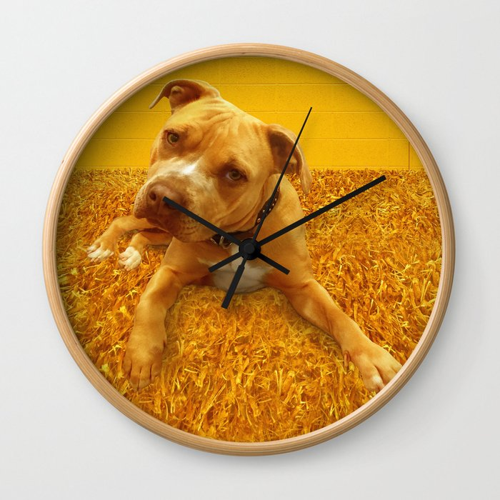 CHENiLLE (shelter pup) Wall Clock