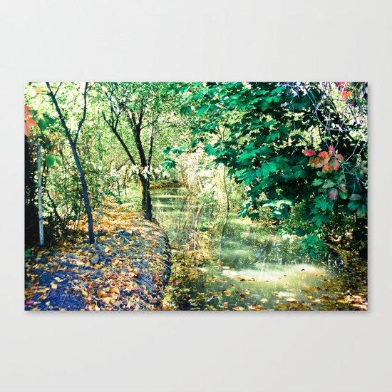 Hidden Autumn Creek Canvas Print