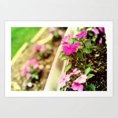 Flower Line Art Print