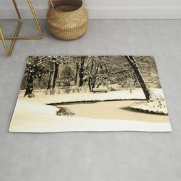 Winter scenery in a park Rug