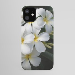 Wild Tropical Hawaiian Plumeria Flowers iPhone Case