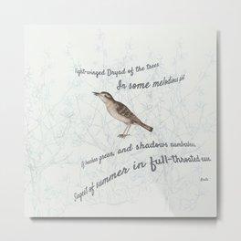 A Nightingale in full throat Metal Print
