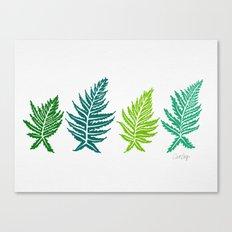 Inked Ferns – Green Palette Canvas Print