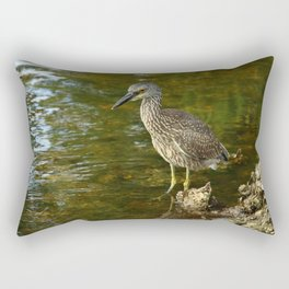 Juvenile Yellow Crowned Night Heron Rectangular Pillow