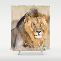 lion king Shower Curtains featuring Lion King by Angelika Stern