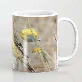 Mr. Lesser Goldfinch Feeds on Seeds Coffee Mug