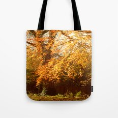 A Colourful Day. Tote Bag