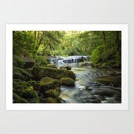 Ledge Falls, No. 3 Art Print