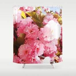Pink Sorbet Shower Curtain