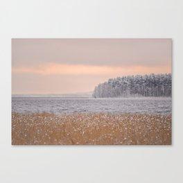 Snowy Trees and Reeds at Lake Shore Canvas Print