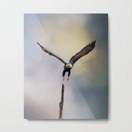 Lift Off - Bald Eagle Metal Print