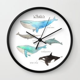 Whale collection Wall Clock