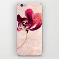tulip iPhone & iPod Skins featuring Tulip by Claudia Drossert