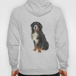Bernese Mountain Dog. Drawing funny dog Hoody