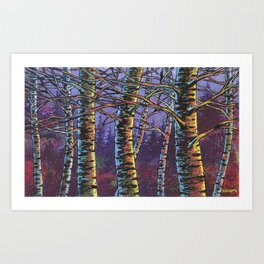 December sunset Art Print