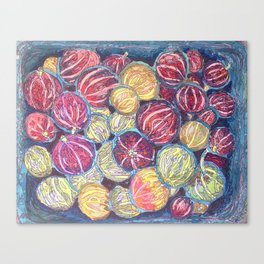 PYO Gooseberries at Love Apple Farm Canvas Print