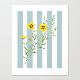 Yellow flowers on blue stripes Canvas Print