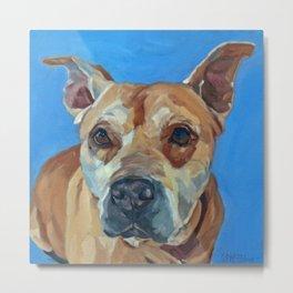 Happy the Bully Dog Portrait Metal Print
