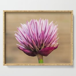 Chive Flower Serving Tray