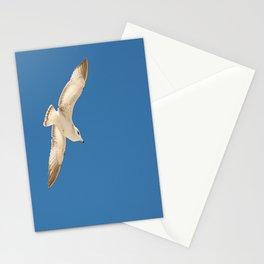 white gull/blue sky Stationery Cards