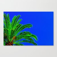 palm tree Canvas Prints featuring Palm Tree by Phil Smyth